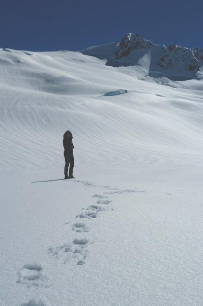 Franz Josef Glacier Landing